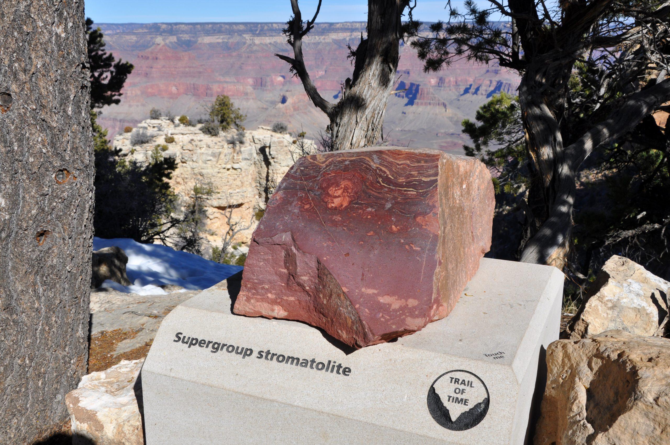 Grand Canyon Trail of Time - Supergroup stromatolite - 0368