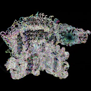 Rendering of Parkin's opening conformers resulting from molecular dynamics simulations. Image Credit: Thomas R. Caulfield