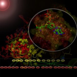Our September issue image: Matching drug binding pockets in protein models using sequence order-independent structure alignments. Image Credit: Michal Brylinski.
